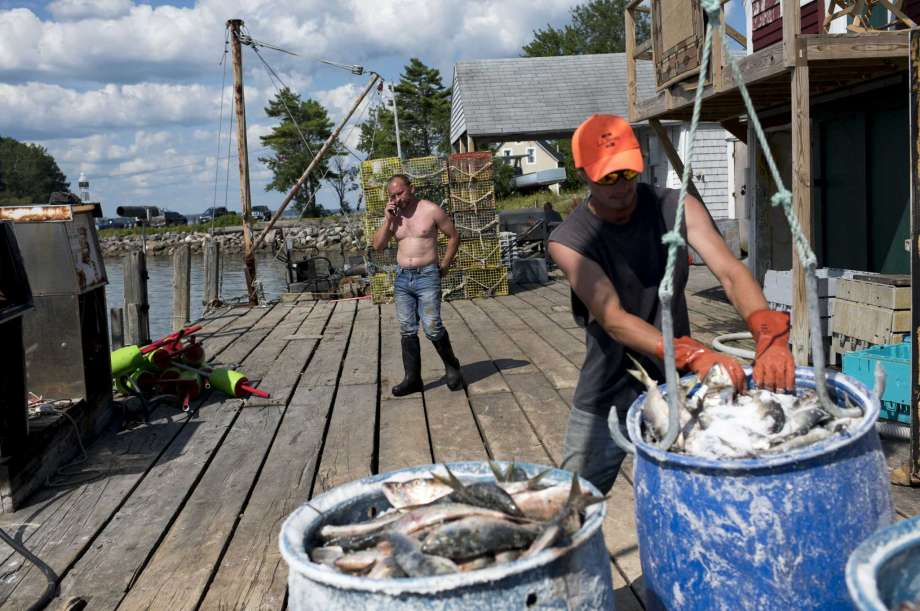 Albert Rose, owner of Allen's Seafood, talks on the phone while fishermen unload their catch last month in Harpswell, Maine. With a median age of 57, Harpswell is the oldest town in the oldest state, by population